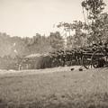 Gettysburg Union Infantry 9968s by Cynthia Staley