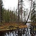 Haukkajoki Panorama 2 by Jouko Lehto