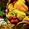 Italian Peppers  by Harry Spitz