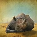 Lazy Days by Dave Godden