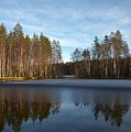 Liesilampi 5 by Jouko Lehto