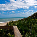 Melbourne Beach On The East Coast Of Florida by Allan  Hughes