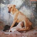 Mother's Love by Dorota Nowak