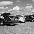 Navy Biplanes 19411945 Black White 1940s Airport by Mark Goebel