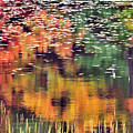 New England Reflections by Betty LaRue