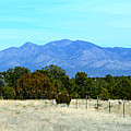 New Mexico Mountains by Kathy M Krause