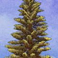 O Christmas Tree by Jodie Marie Anne Richardson Traugott          aka jm-ART