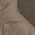 Oak Leaf Abstract by Sandra Gallegos