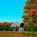 Old Barn In Fall Color by Robert Pearson