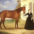 Portrait Of A Lady With Her Horse by English School