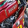 Racing Ducati  by Tim Gainey