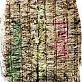 Recycled Paper by Bernard Jaubert