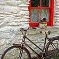 Red Window by Jennifer Robin