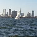 Sailing Away by Myrtle Joy