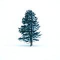 Snow Tree by Martin Massari