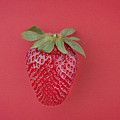 Strawberry In Red I by Paulo Goncalves