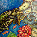 Sweet Mystery Of The Sea A Hawksbill Sea Turtle Coasting In The Coral Reefs Original by Kimberlee Baxter