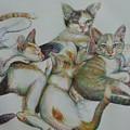 The Family  by Sukalya Chearanantana