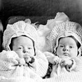 Twins In Baby Buggy 1910s Black White Archive by Mark Goebel