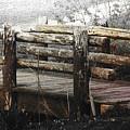 Walking Bridge by Debbie Nobile