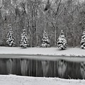 Winter Reflections by Cheryl Carder-Hall