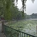 0038-2- Beihai Park by David Lange