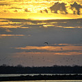 019 April Sunsets by Michael Frank Jr