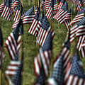 03 Flags For Fallen Soldiers Of Sep 11 by Michael Frank Jr