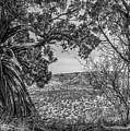 030715 Palo Duro Canyon 105 6 7 by Ashley M Conger