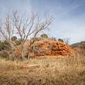 030715 Palo Duro Canyon 160 by Ashley M Conger