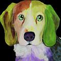 0356 Dog By Nixo by Supreme Inc