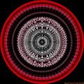 #050820155 by Visual Artist Frank Bonilla