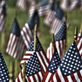 07 Flags For Fallen Soldiers Of Sep 11 by Michael Frank Jr