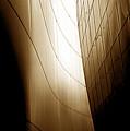 08002 by Jeffrey Freund