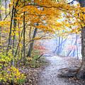 0982 Starved Rock Riverwalk by Steve Sturgill
