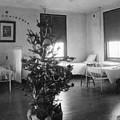 Christmas Tree In Hospital Ward 1923 Black White by Mark Goebel