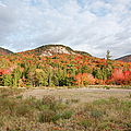 Kancamagus Highway - White Mountains New Hampshire Usa by Erin Paul Donovan