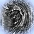 090120173 by Visual Artist Frank Bonilla