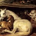 10234 Edwin Henry Landseer by Eloisa Mannion