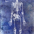 1911 Anatomical Skeleton Patent Blue by Jon Neidert