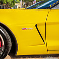 2013 Chevrolet Corvette Zo6 Painted Bw  by Rich Franco