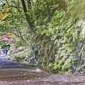 Road To Emmaus by Jean OKeeffe Macro Abundance Art