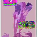 5-21-2015babcd by Walter Paul Bebirian