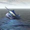 A Blue Marlin Bursts From The Ocean by Corey Ford