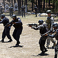 A Green Beret Walks With Tigres by Stocktrek Images