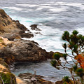 A Grey Day At Big Sur 2 by Barbara Snyder
