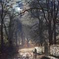 A Moonlit Lane by Pam Neilands