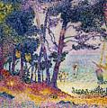 A Pine Grove by Henri-Edmond Cross