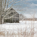 A Winters Day by Bill Wakeley