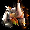 Abstract Peacock by Iris Gelbart